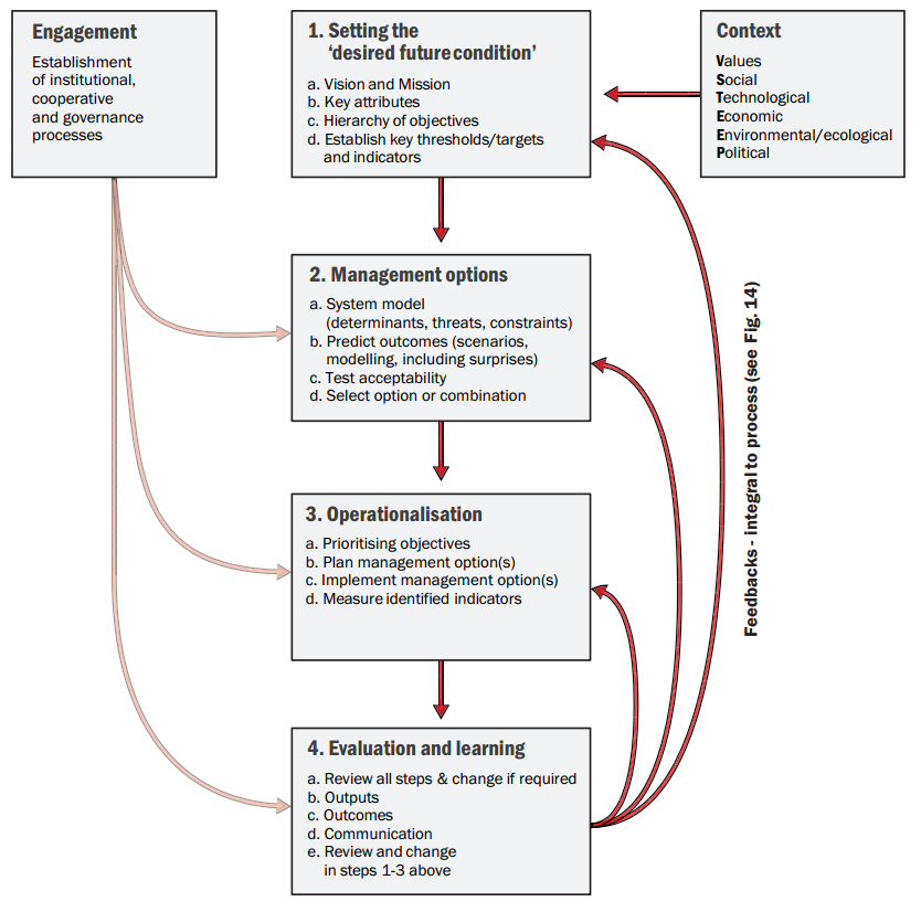 Strategic Adaptive Management Framework that outlines all pre- and primary- steps of the process.