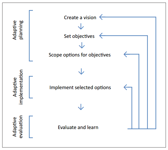 Schematic of the steps in an adaptive management process.