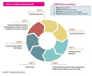 Screenshot of CoBRA Methodology