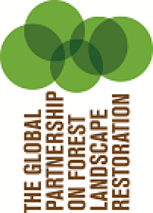 Logo for the Global Partnership on Forest Landscape Restoration. Features text Global Partnership for Forest Landscape Restoration vertically in brown with green circles above organized like trees.