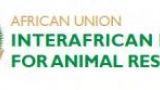 African Union Logo of Africa inside a circle with the text African Union Interafrican Bureau for Animal Resources to the right.