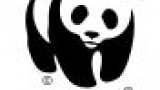 WWF logo of a panda on top of the text WWF.